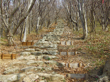 Steps to Goshado Shrine